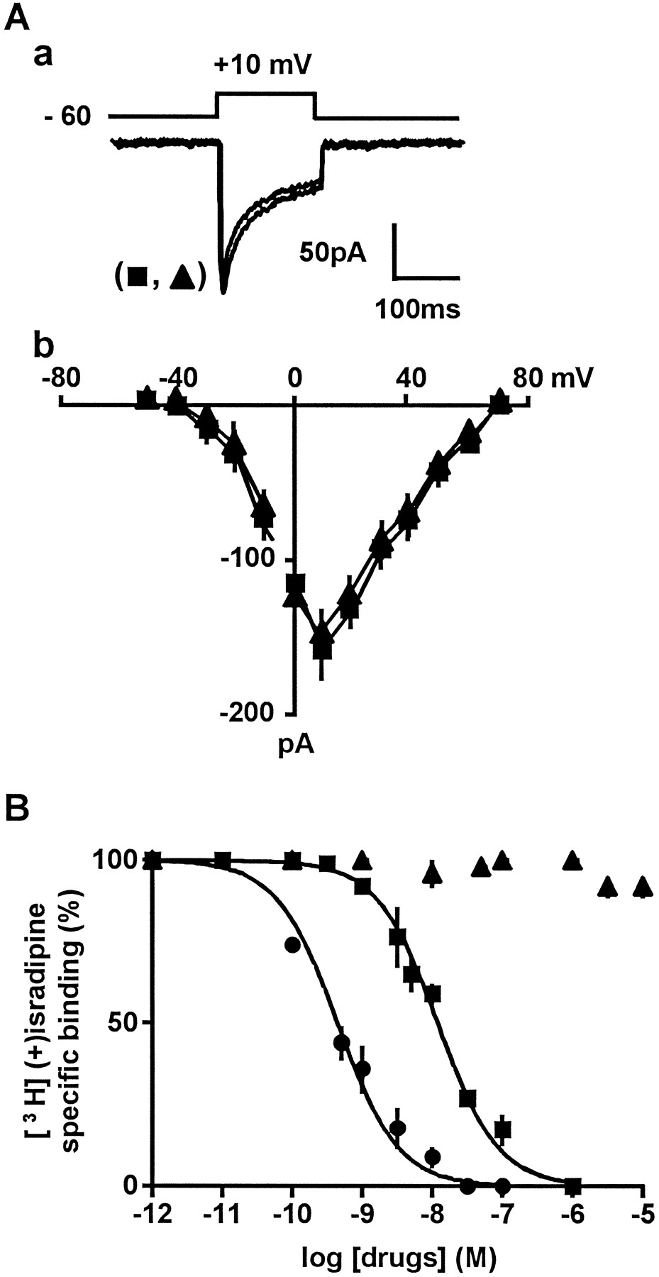 Purification of a New Dimeric Protein from Cliona vastifica