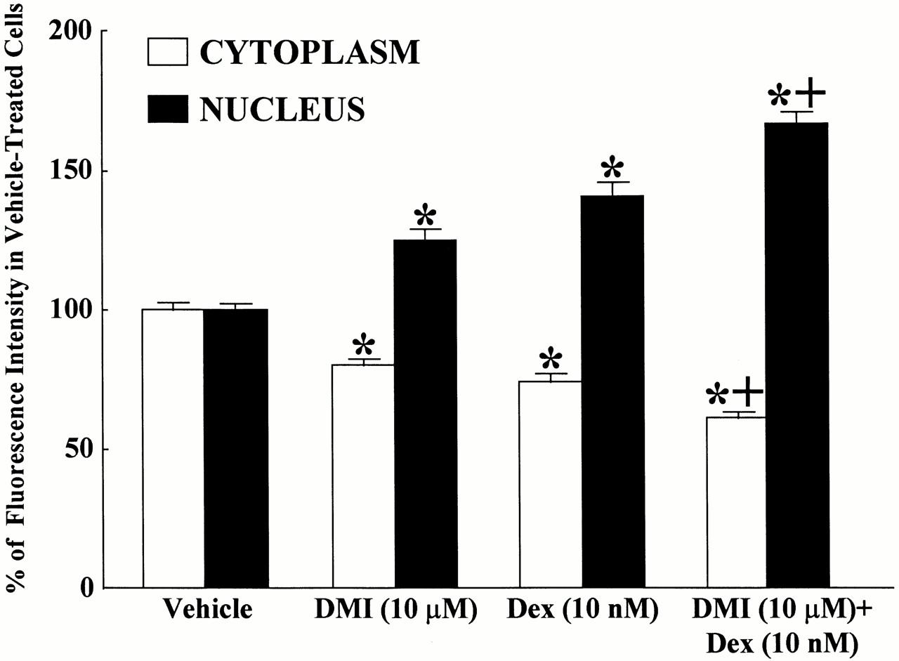 metabolic breakdown of steroids volume 2 ciba foundation symposium