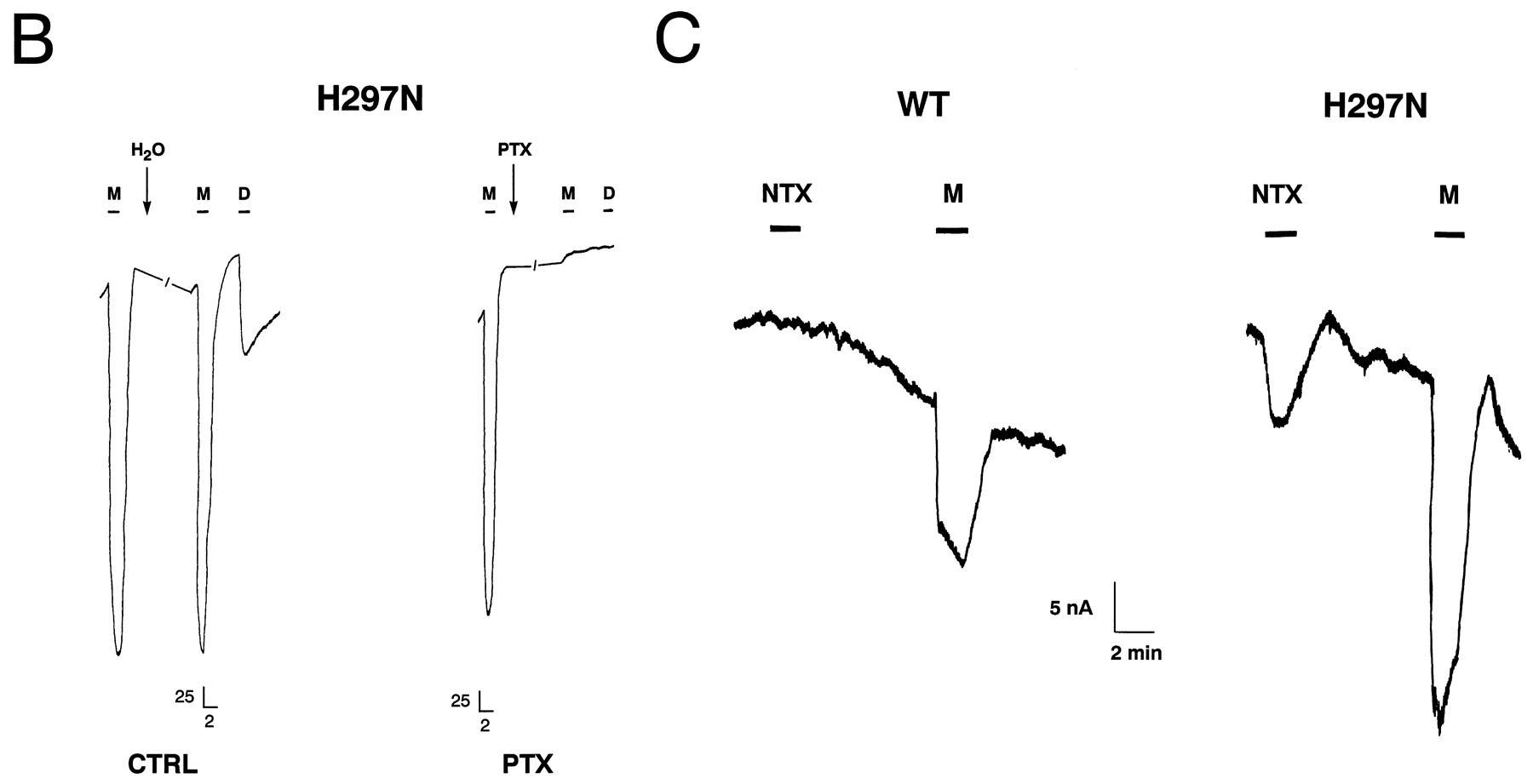 Naloxone Activation of μ-Opioid Receptors Mutated at a