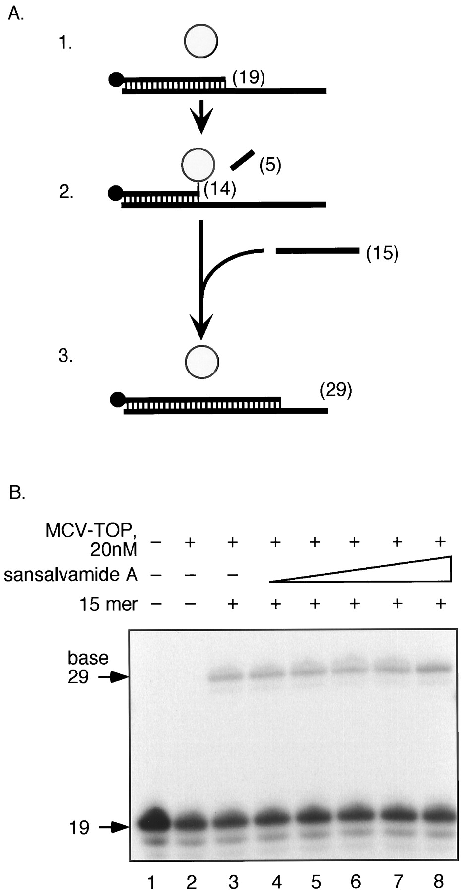 Mechanism of Inhibition of a Poxvirus Topoisomerase by the Marine