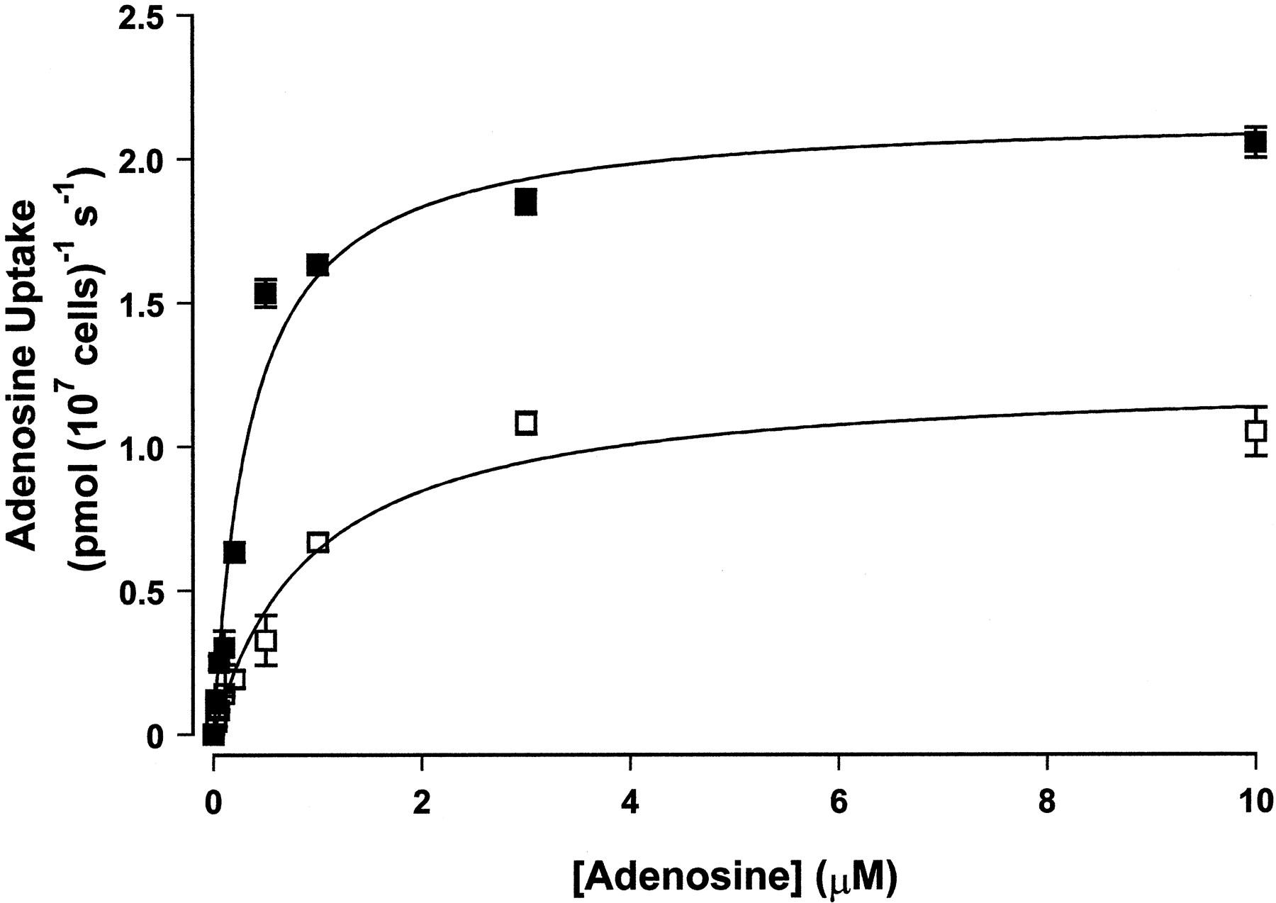 Adenosine Transporters in Bloodstream Forms of Trypanosoma