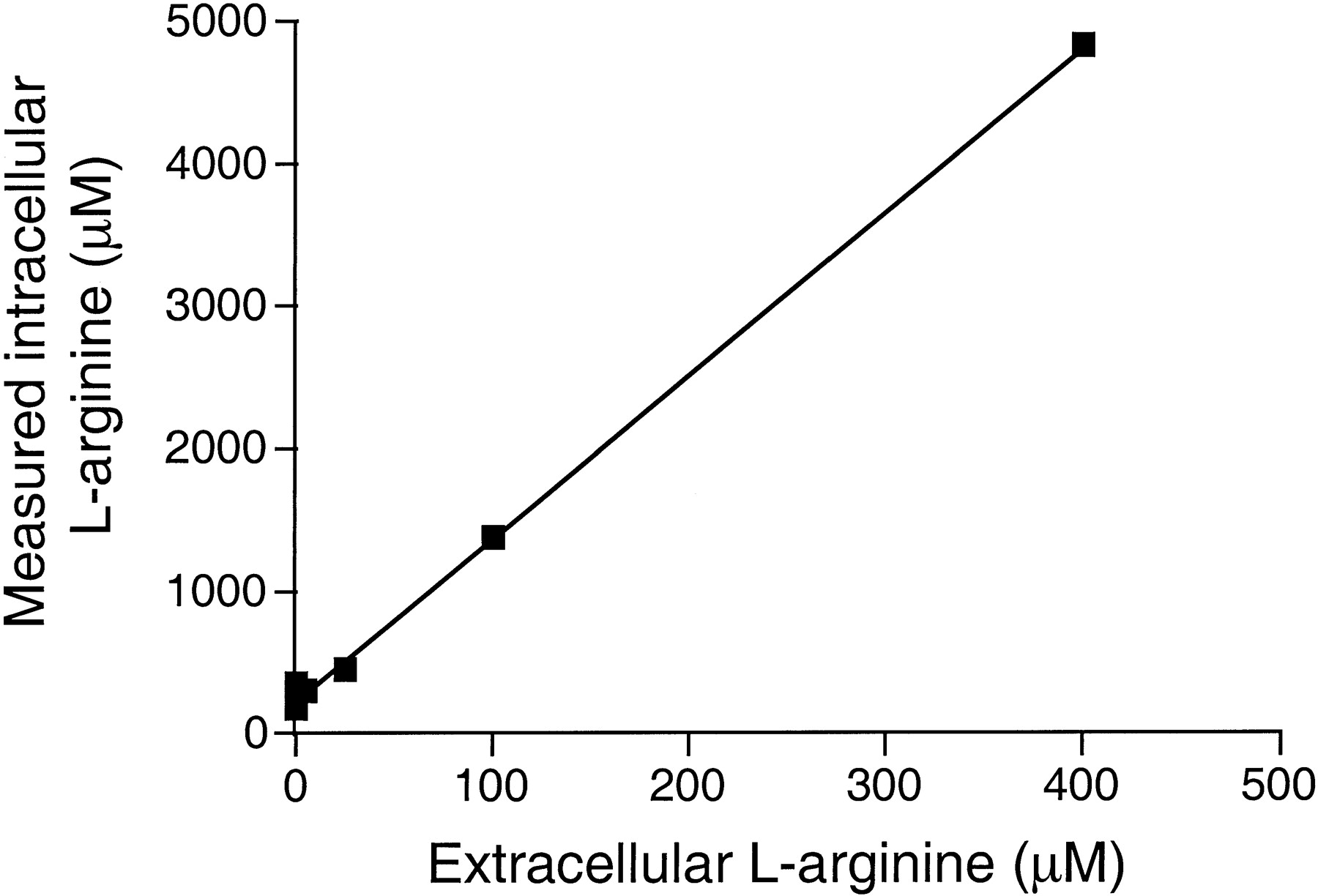 Substrate Supply for Nitric-Oxide Synthase in Macrophages and