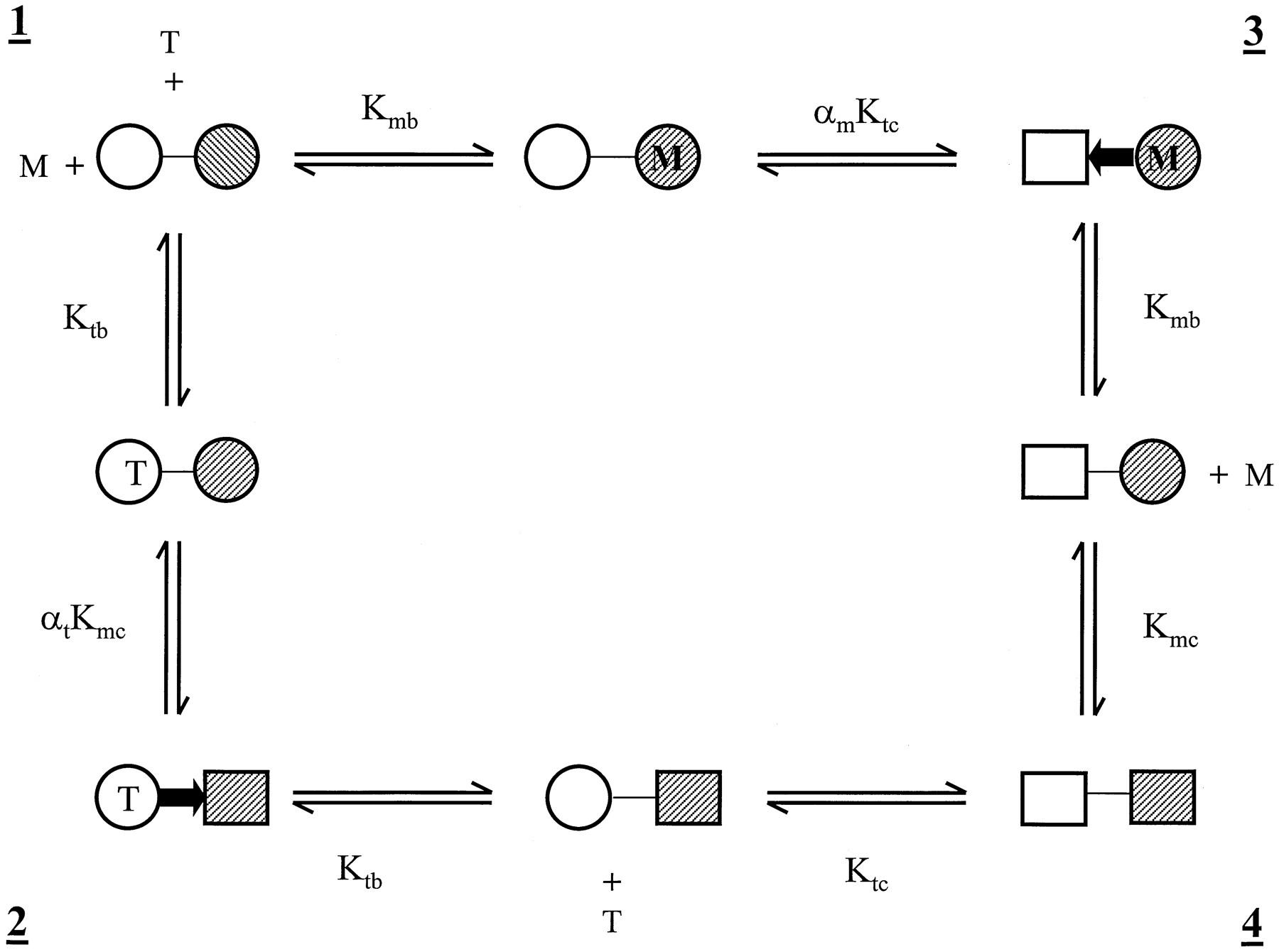 Communication between Multiple Drug Binding Sites on P ...