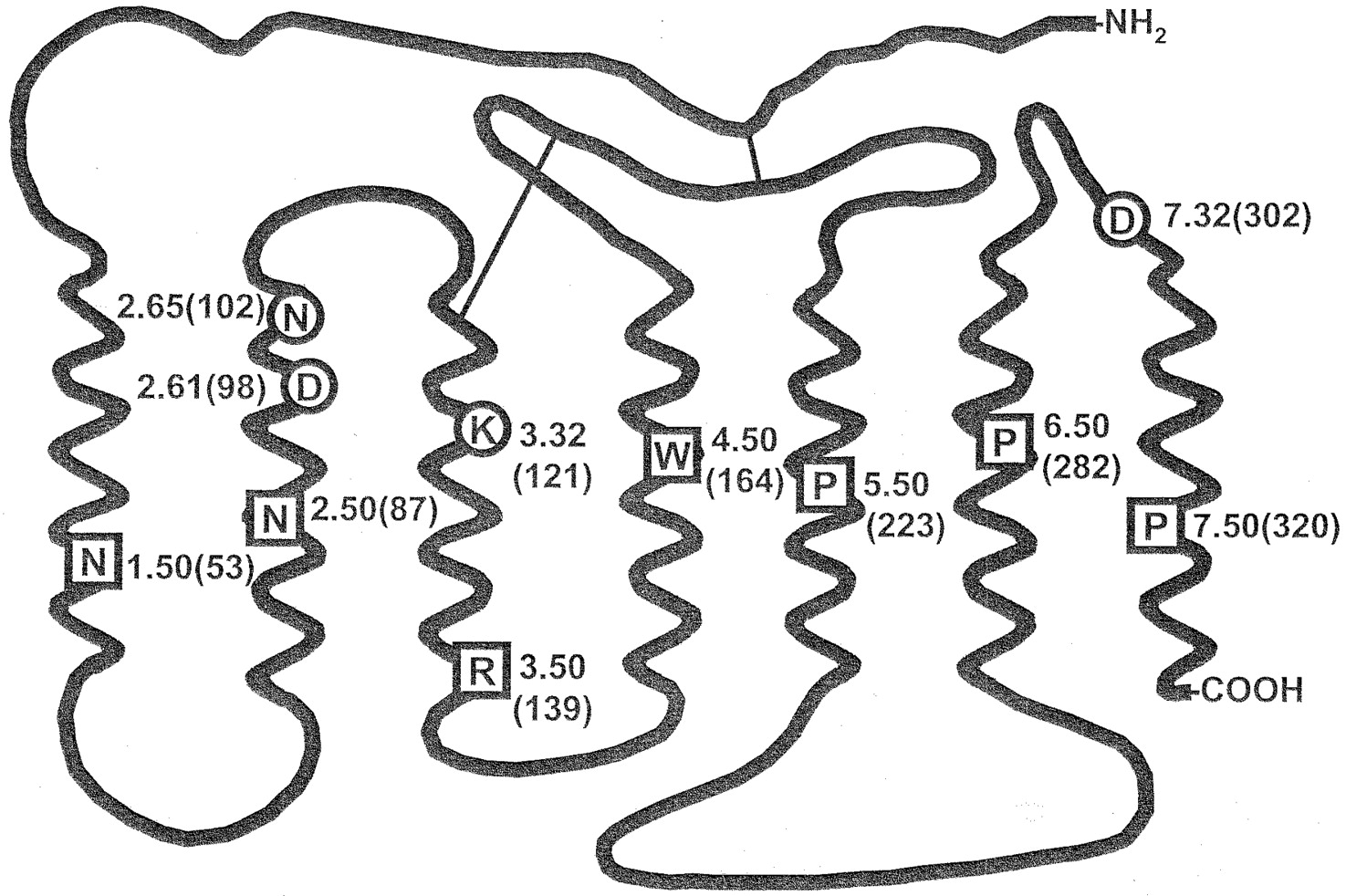 role of aspartate7 32 302 of the human gonadotropin releasing IPR Valve Location download figure