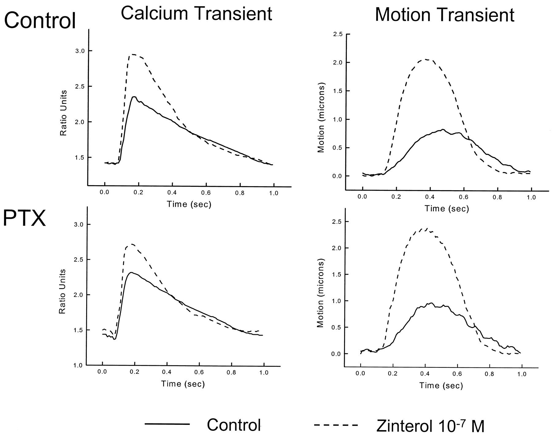 Developmental Changes in β2-Adrenergic Receptor Signaling