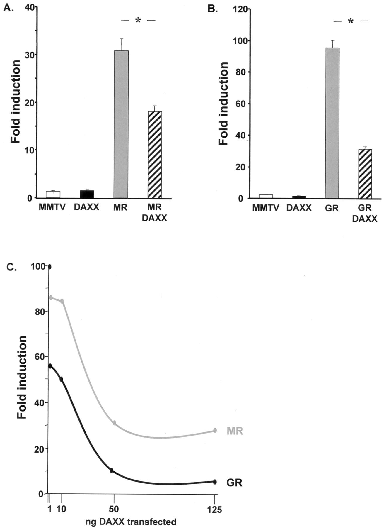 Daxx Flash And Faf 1 Modulate Mineralocorticoid Glucocorticoid 1796 Cj7 Fuse Box Diagram Download Figure