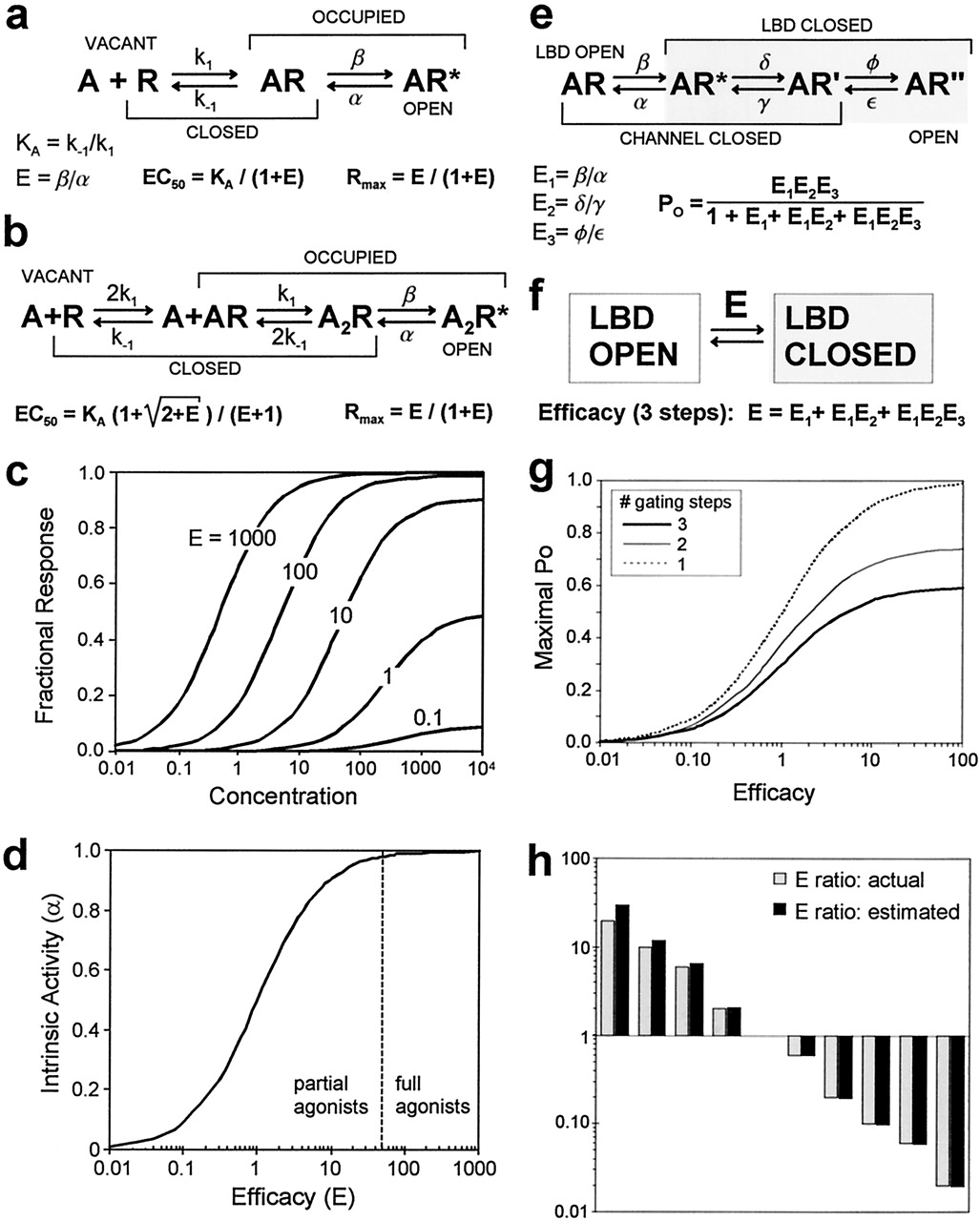 4aea845623 Ligand-Binding Residues Integrate Affinity and Efficacy in the NMDA ...