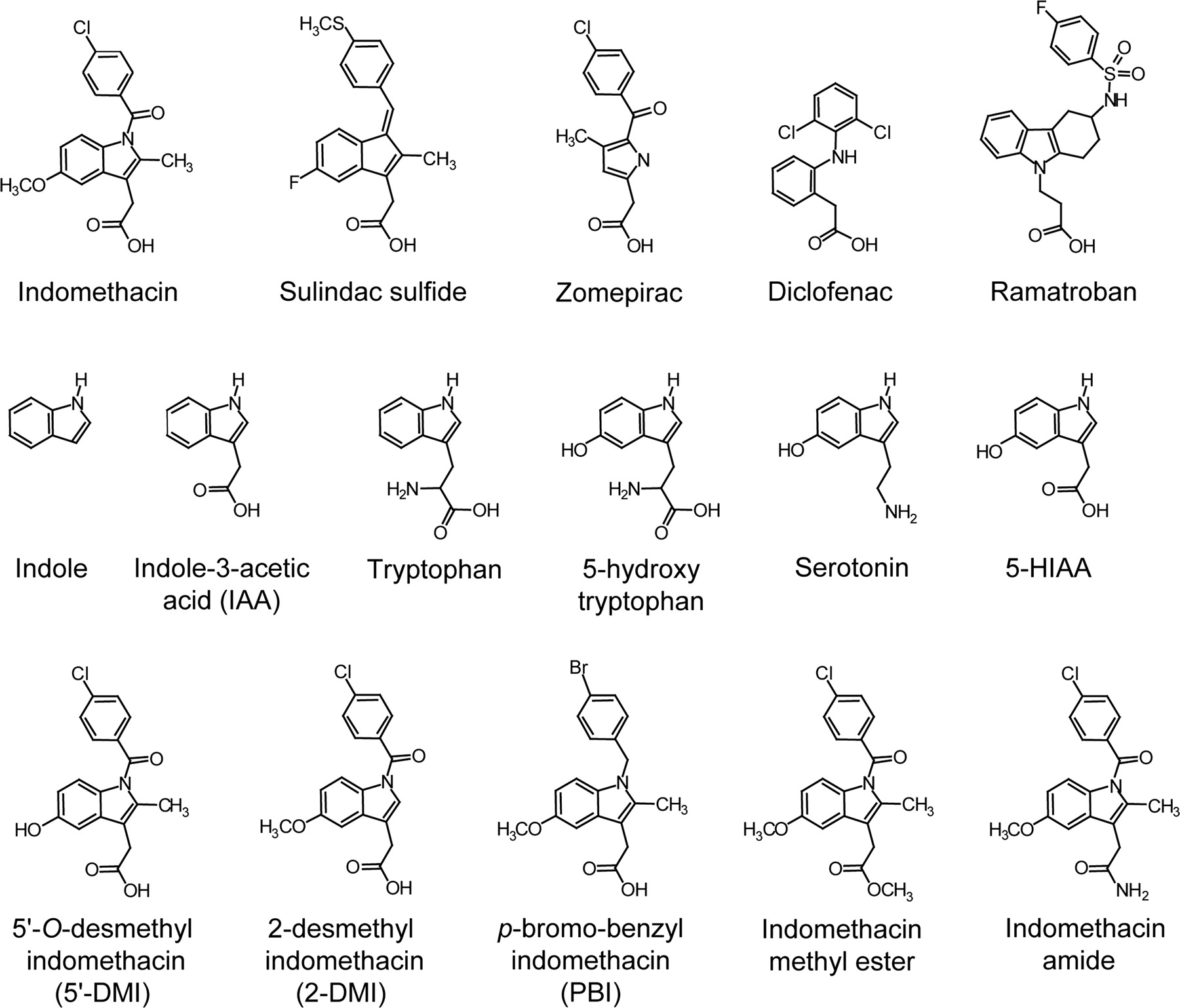 Structural Determinants Of Arylacetic Acid Nonsteroidal