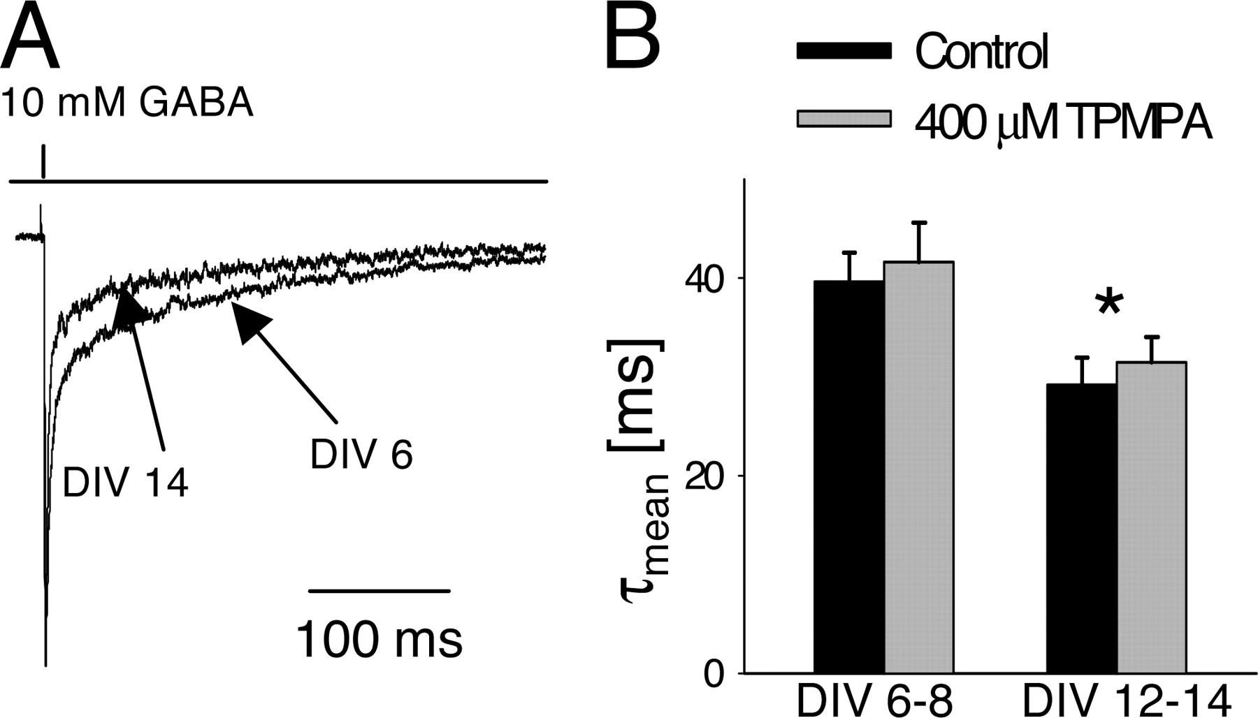 Developmental Changes Of Gaba Synaptic Transient In Cerebellar Figure 5 The Block Diagram Bis Algorithm Abbreviations Bsr Download