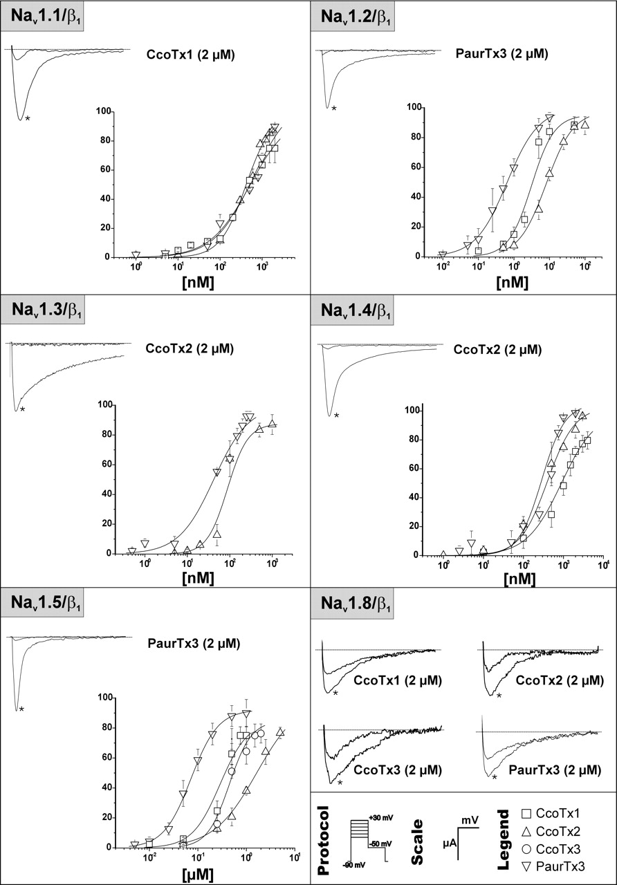 four novel tarantula toxins as selective modulators of voltage