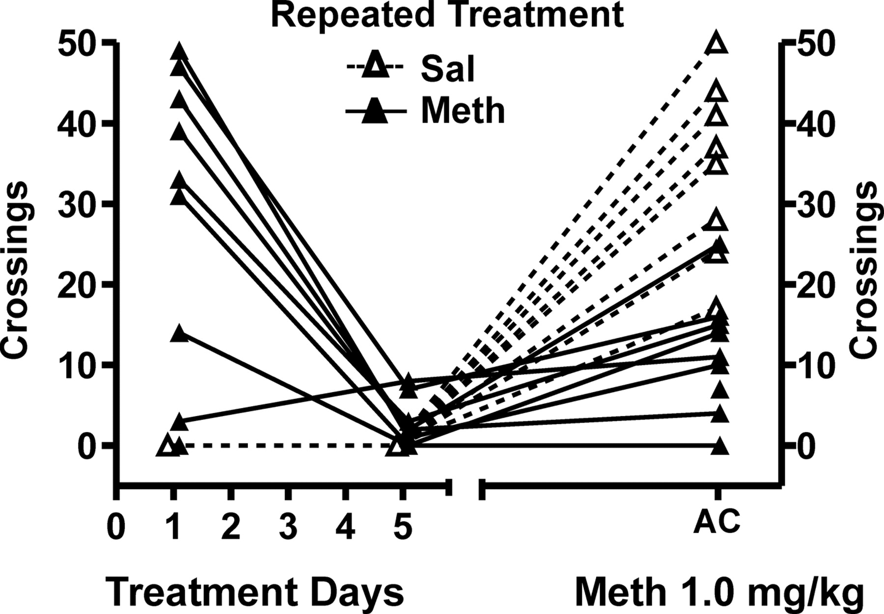 Methamphetamine-Induced Sensitization Differentially
