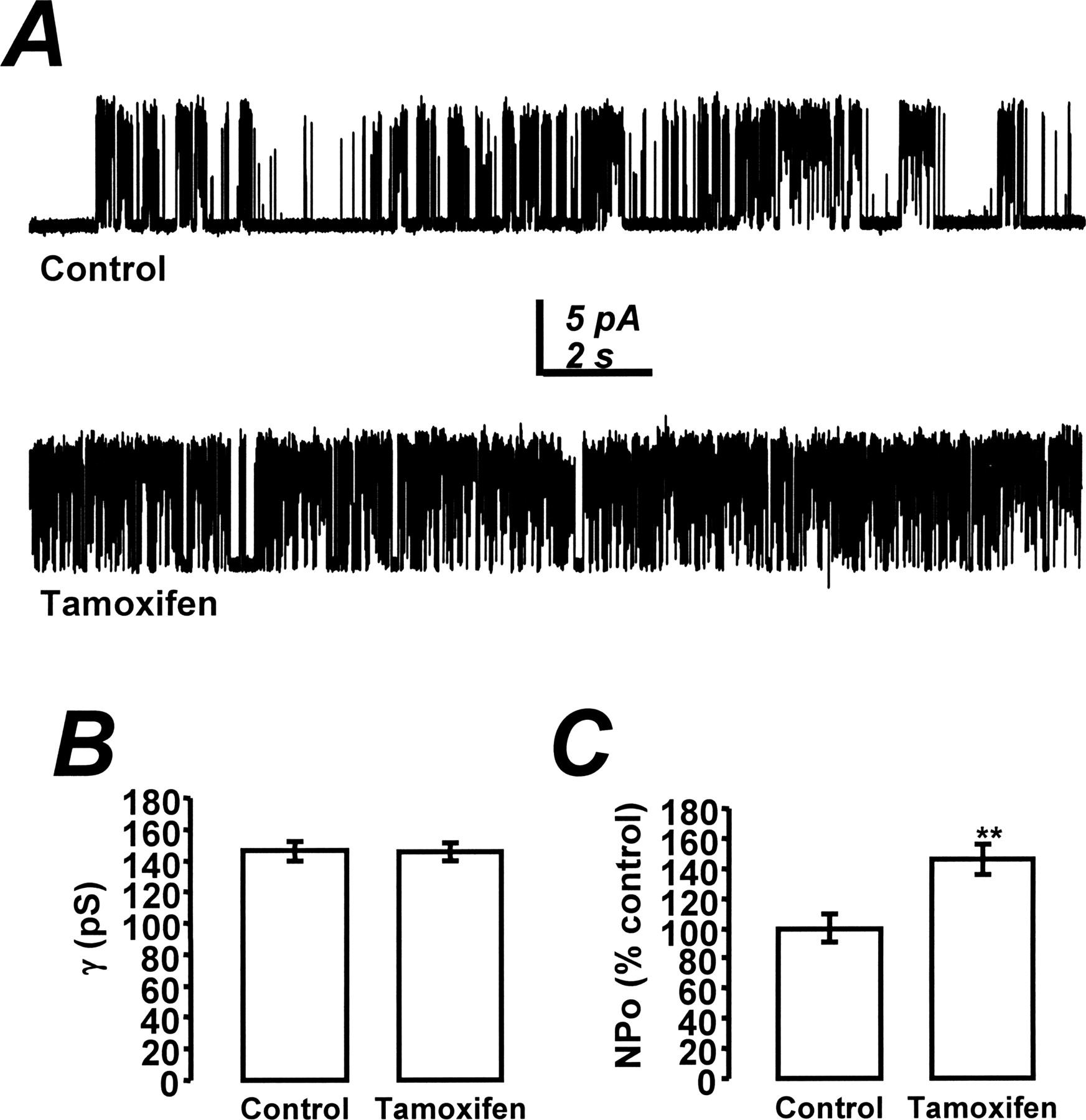 The Antiestrogen Tamoxifen Activates Bk Channels And Stimulates Pure Apnea Level 1 Course Download Figure