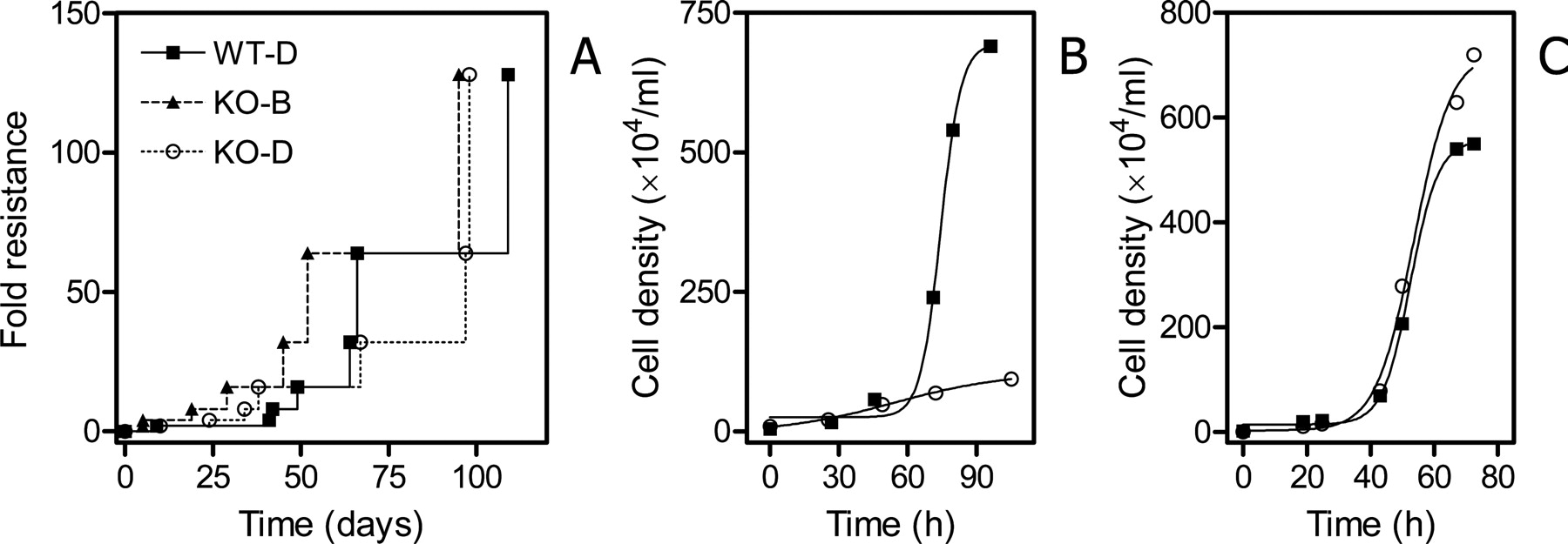 Loss Of The High Affinity Pentamidine Transporter Is