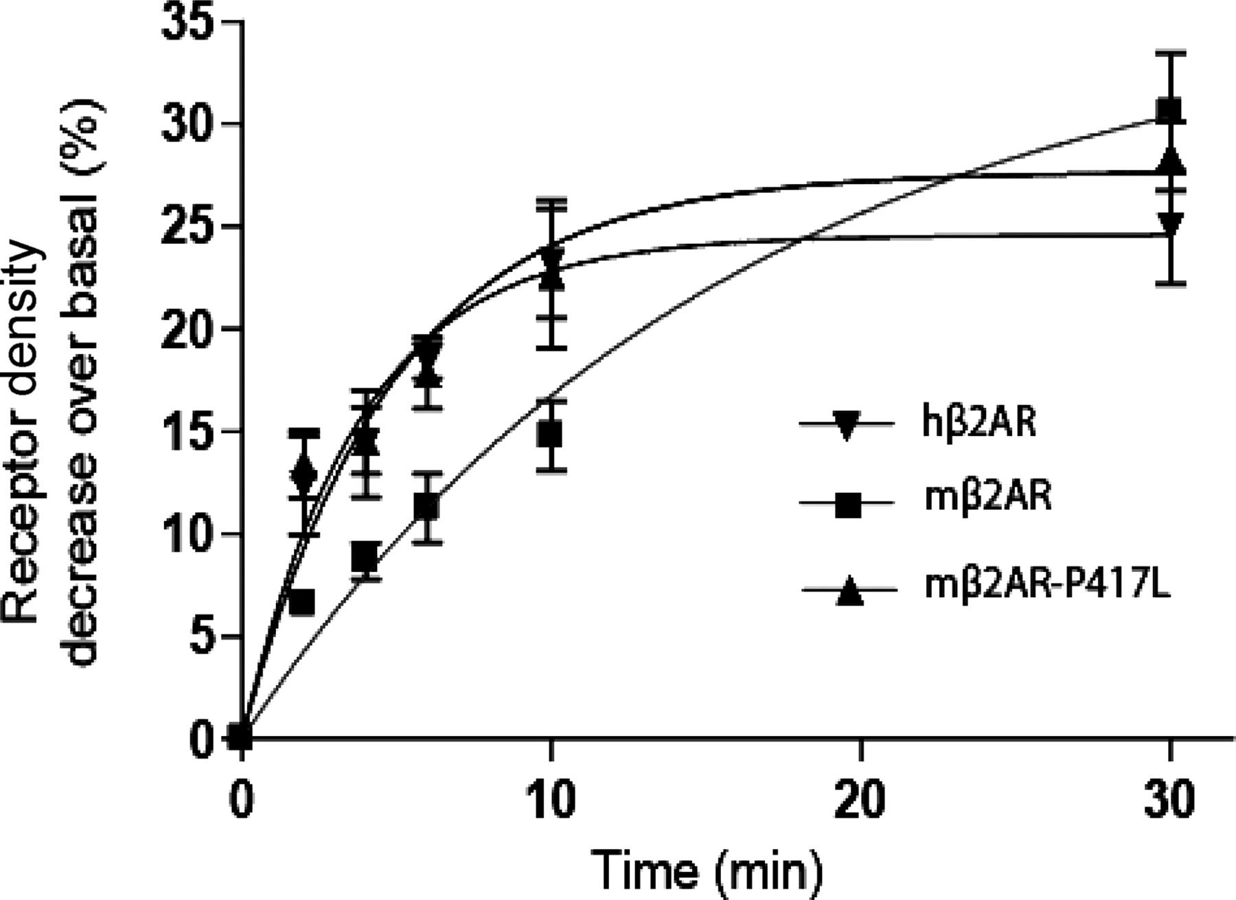 N-Ethylmaleimide-Sensitive Factor Regulates β2