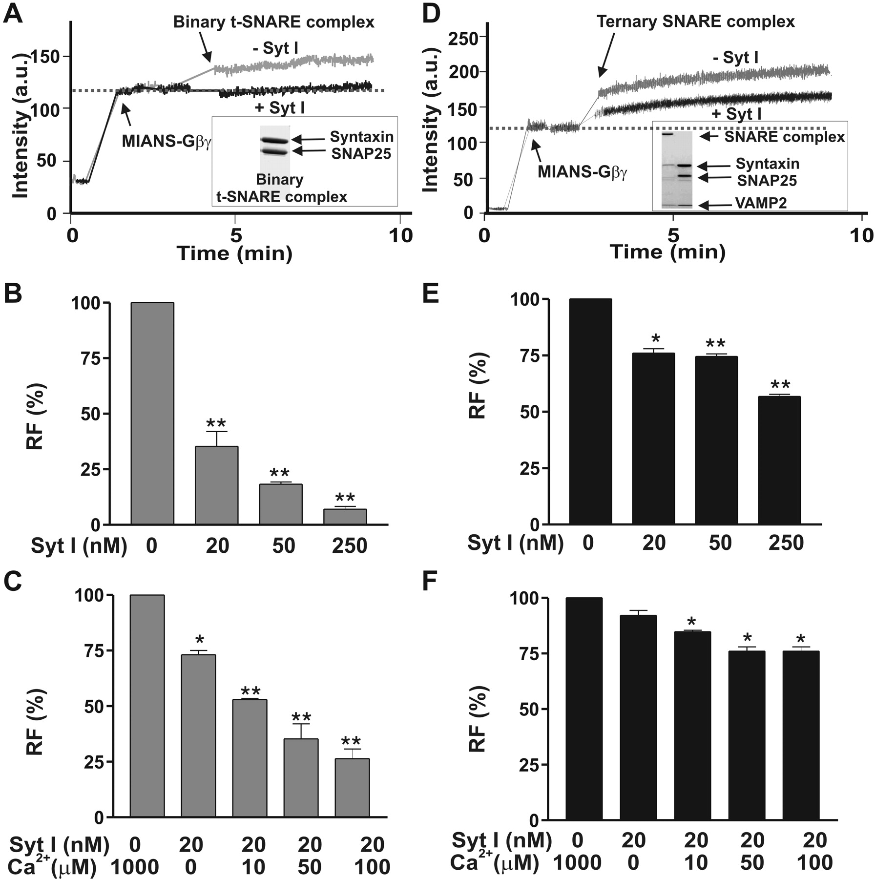 Gβγ Interferes with Ca2+-Dependent Binding of