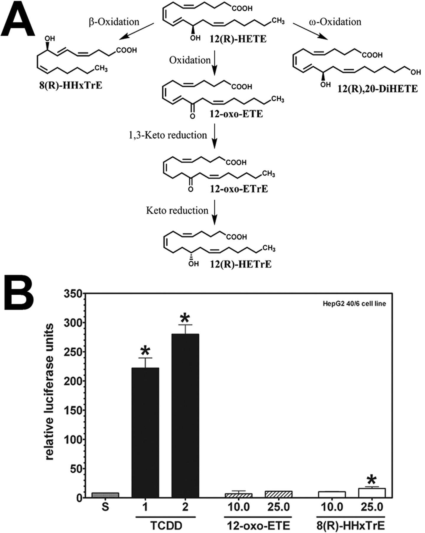 12(r) hydroxy 5(z),8(z),10(e),14(z) eicosatetraenoic acid [12(r  Buy Internet Download Manager 1210217 #6