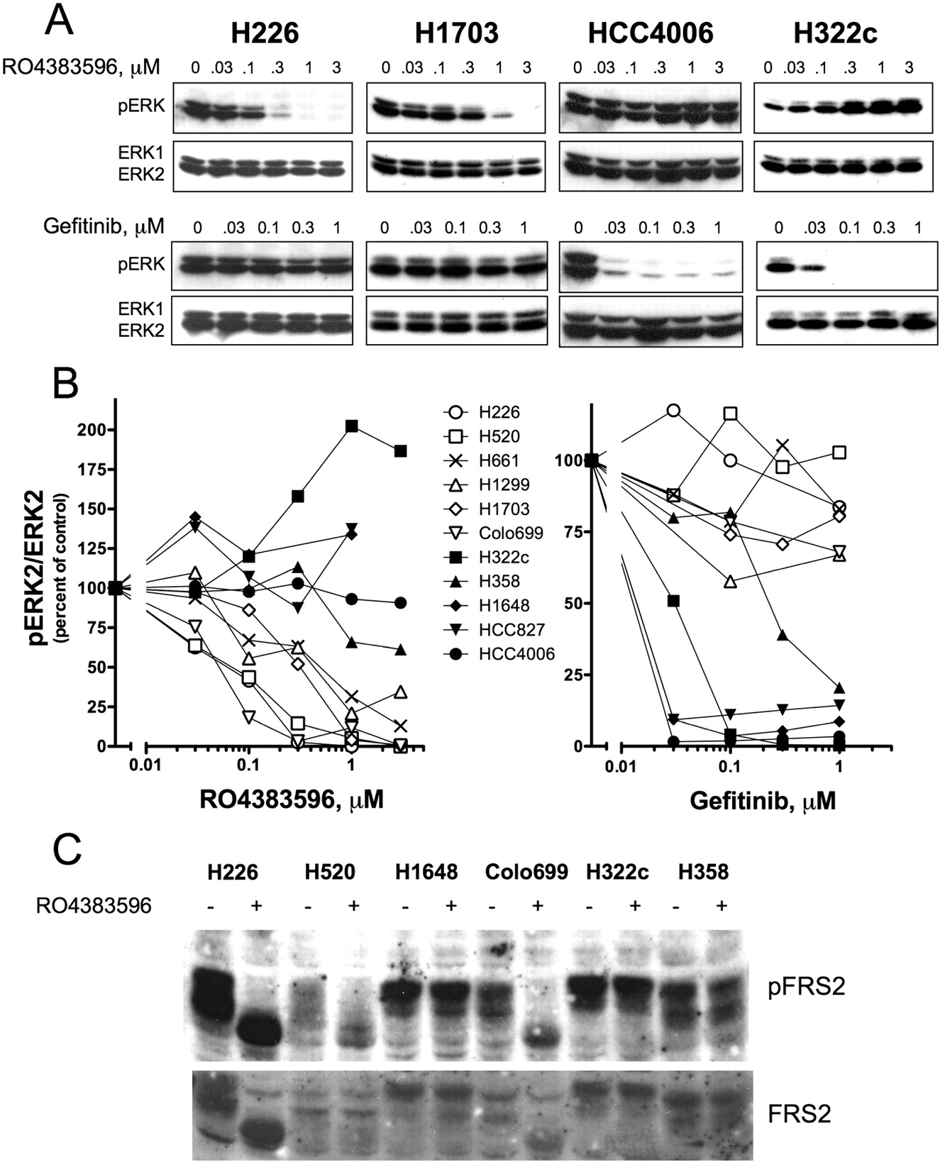 fibroblast growth factor (fgf) and fgf receptor-mediated autocrine ... - Fgf Mobiliit