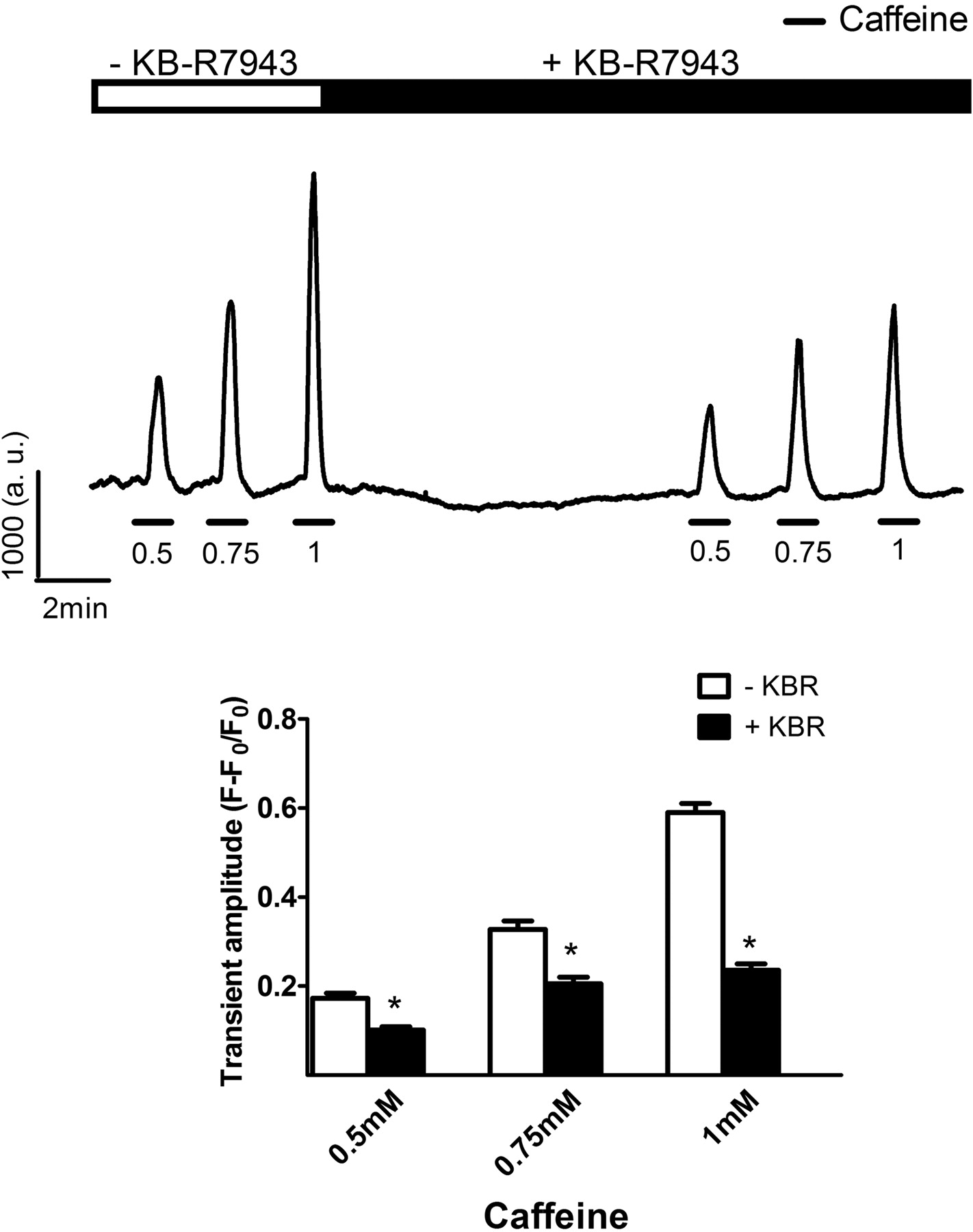 The Na+/Ca2+ Exchange Inhibitor 2-(2-(4-(4-Nitrobenzyloxy
