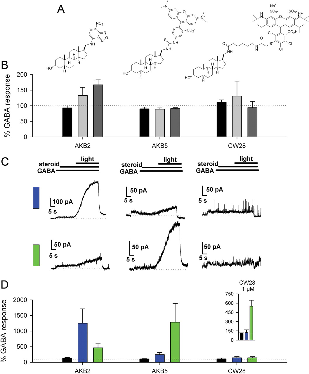 neurosteroid modulation of synaptic and extrasynaptic gabaa receptors