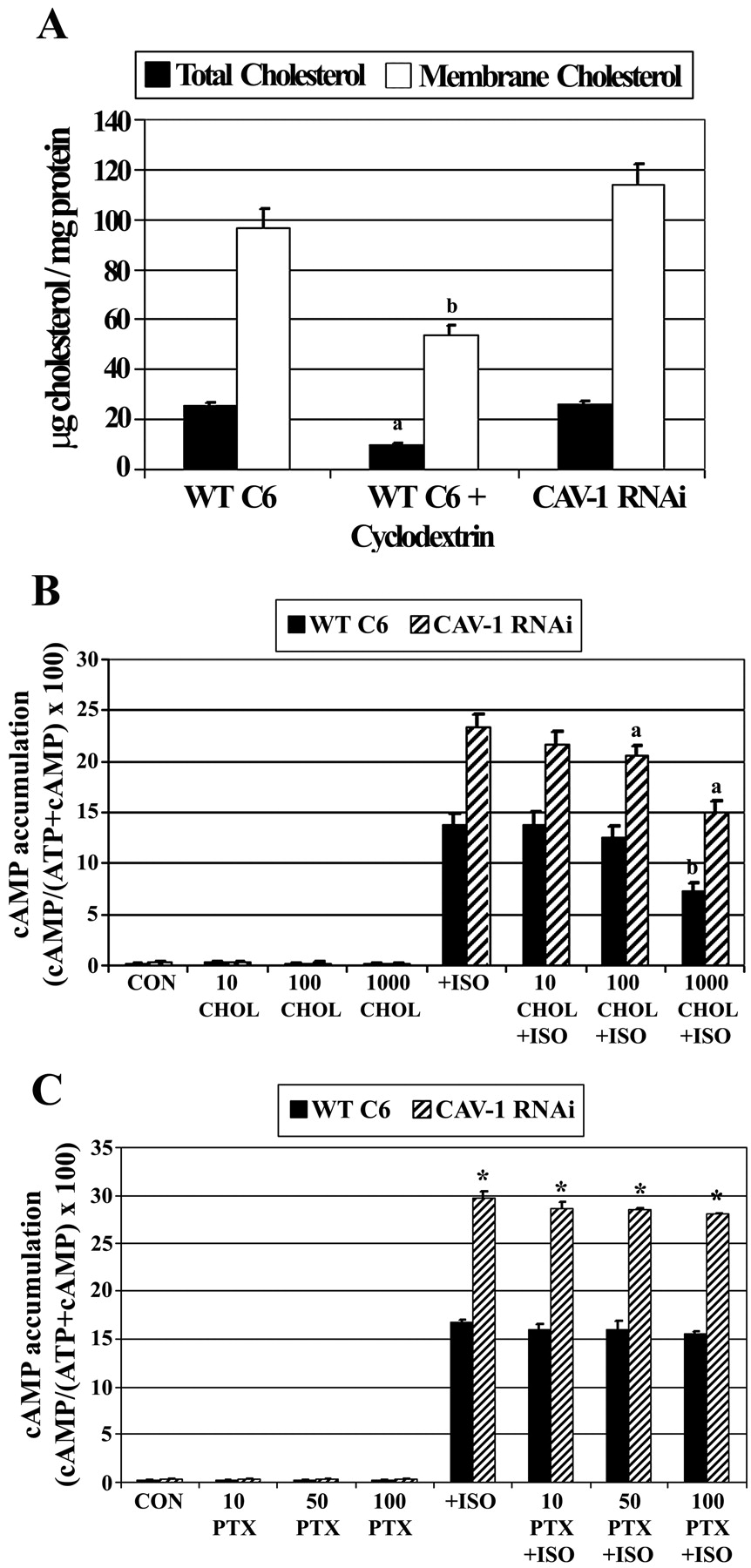 013c0f79a43cb2 Caveolin-1 and Lipid Microdomains Regulate Gs Trafficking and ...