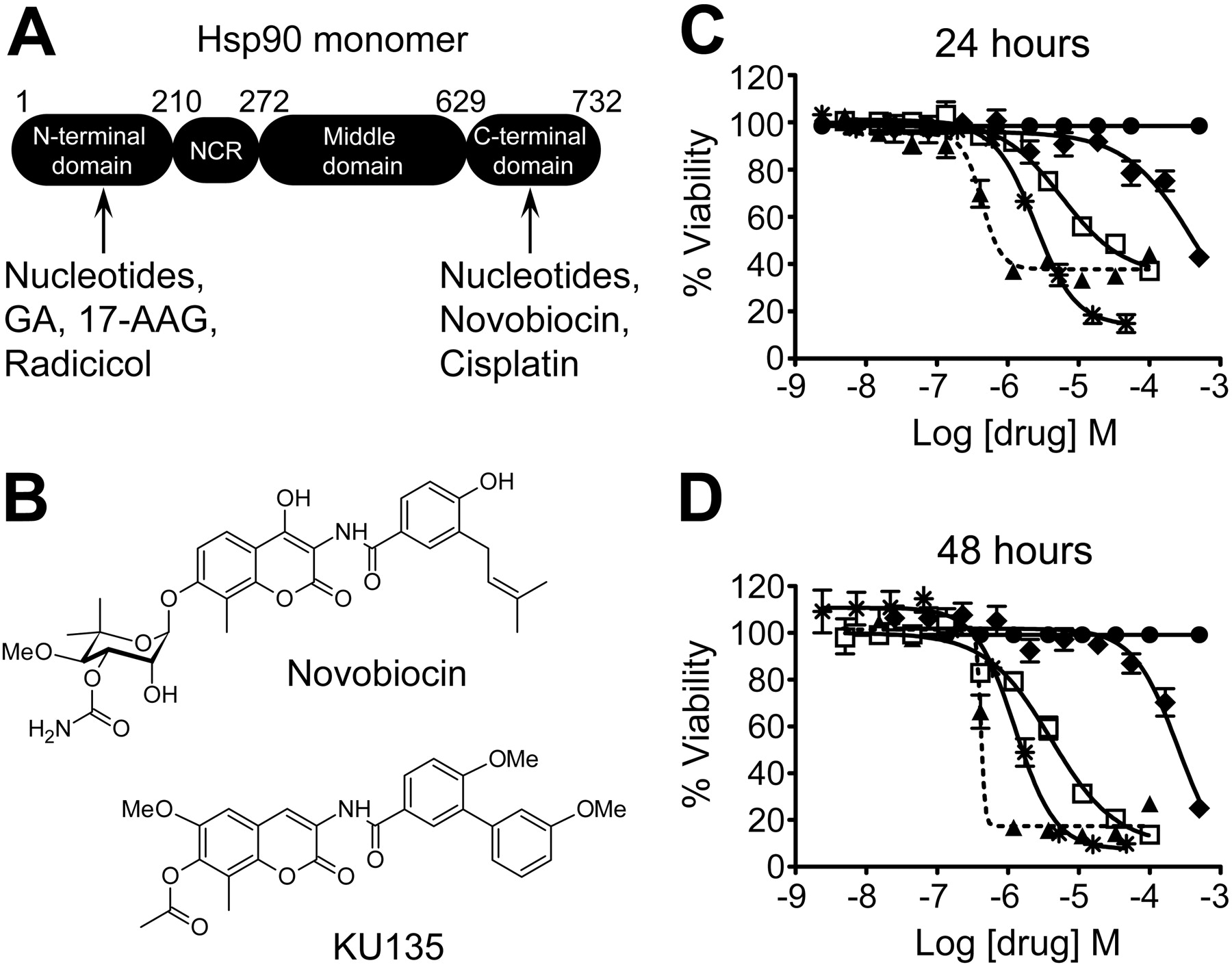 KU135, a Novel Novobiocin-Derived C-Terminal Inhibitor of the 90-kDa