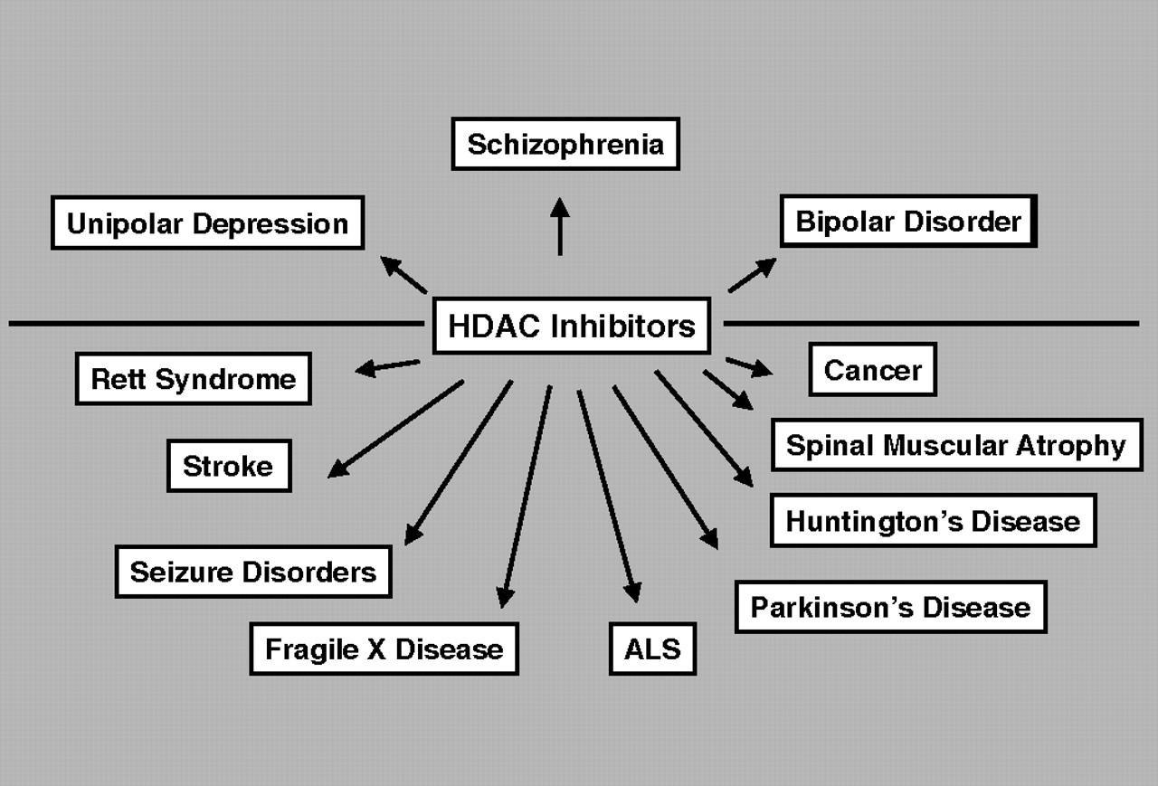abnormal psychology unipolar and bipolar depression