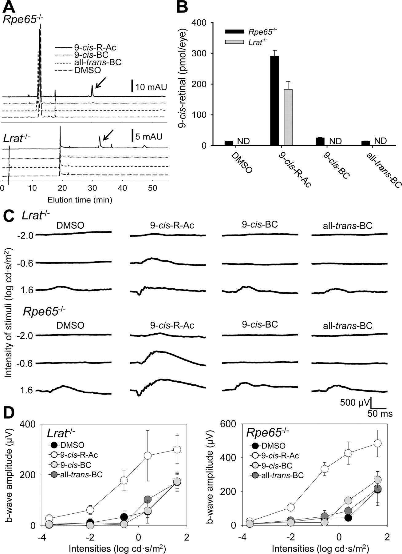 Dietary 9-cis-β,β-Carotene Fails to Rescue Vision in Mouse