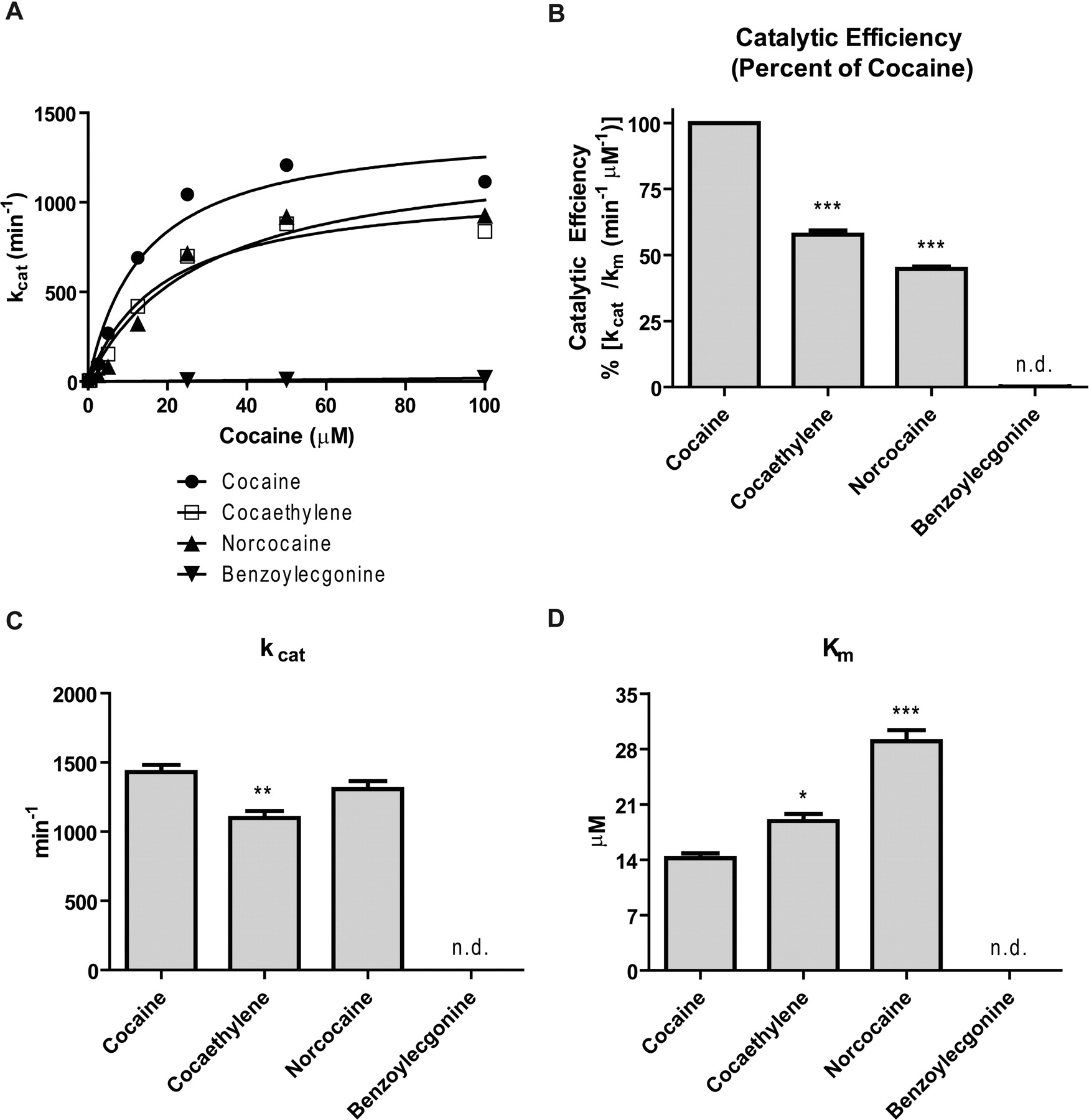 The Ability of Bacterial Cocaine Esterase to Hydrolyze