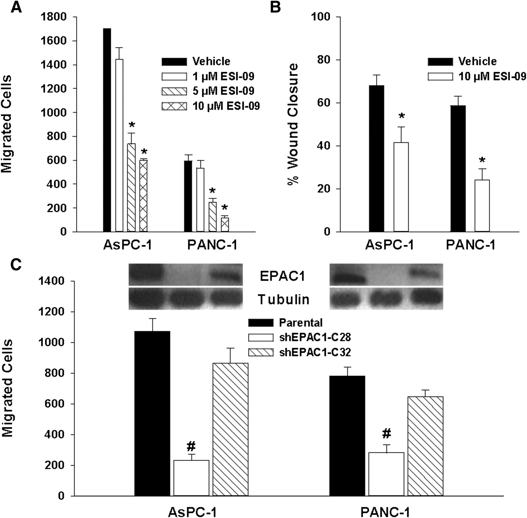 A Novel EPAC-Specific Inhibitor Suppresses Pancreatic Cancer