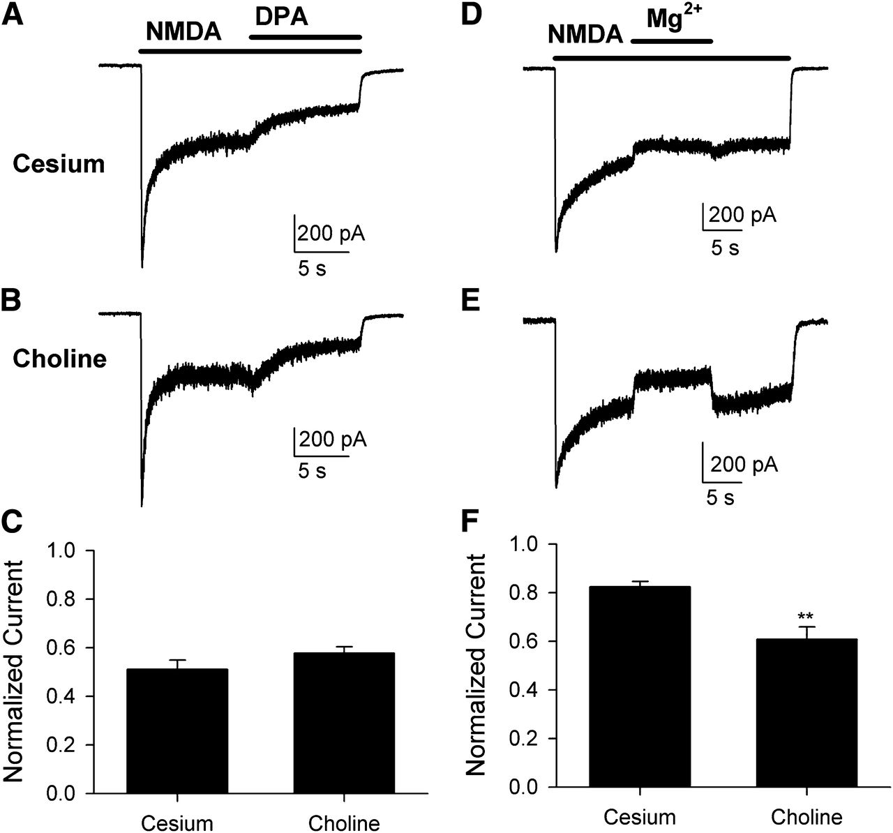 Noncompetitive, Voltage-Dependent NMDA Receptor Antagonism by