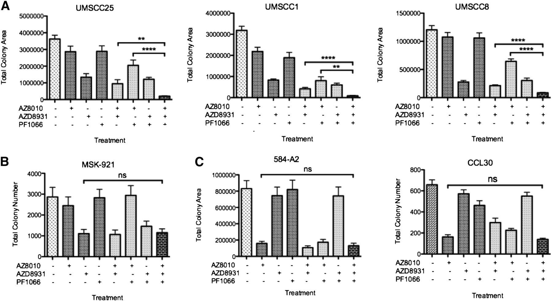 a receptor tyrosine kinase network composed of fibroblast growth factor receptors  epidermal