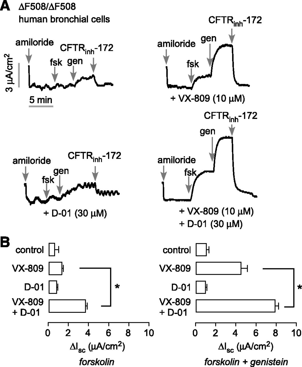 Synergy Based Small Molecule Screen Using A Human Lung Epithelial Shortcircuit Was Created As Reaction Against The Ongoing Trend Where Download Figure