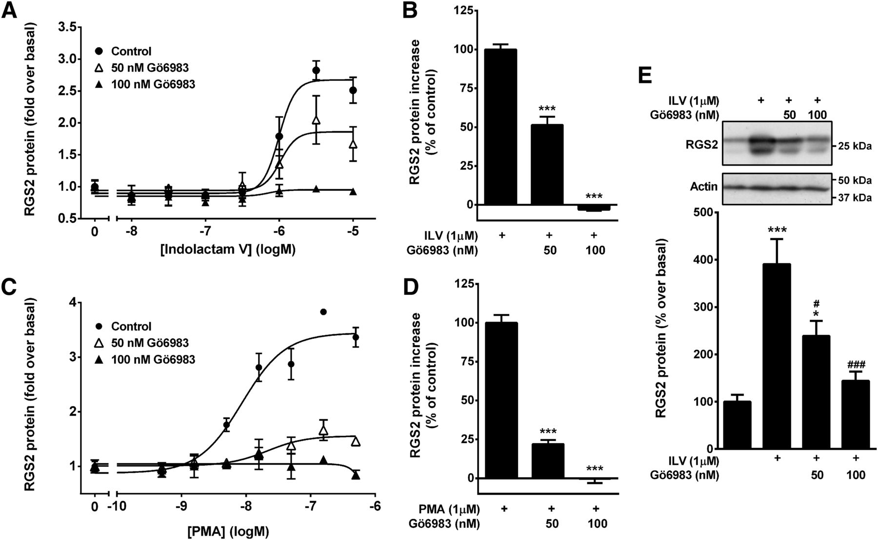 Identification of Protein Kinase C Activation as a Novel