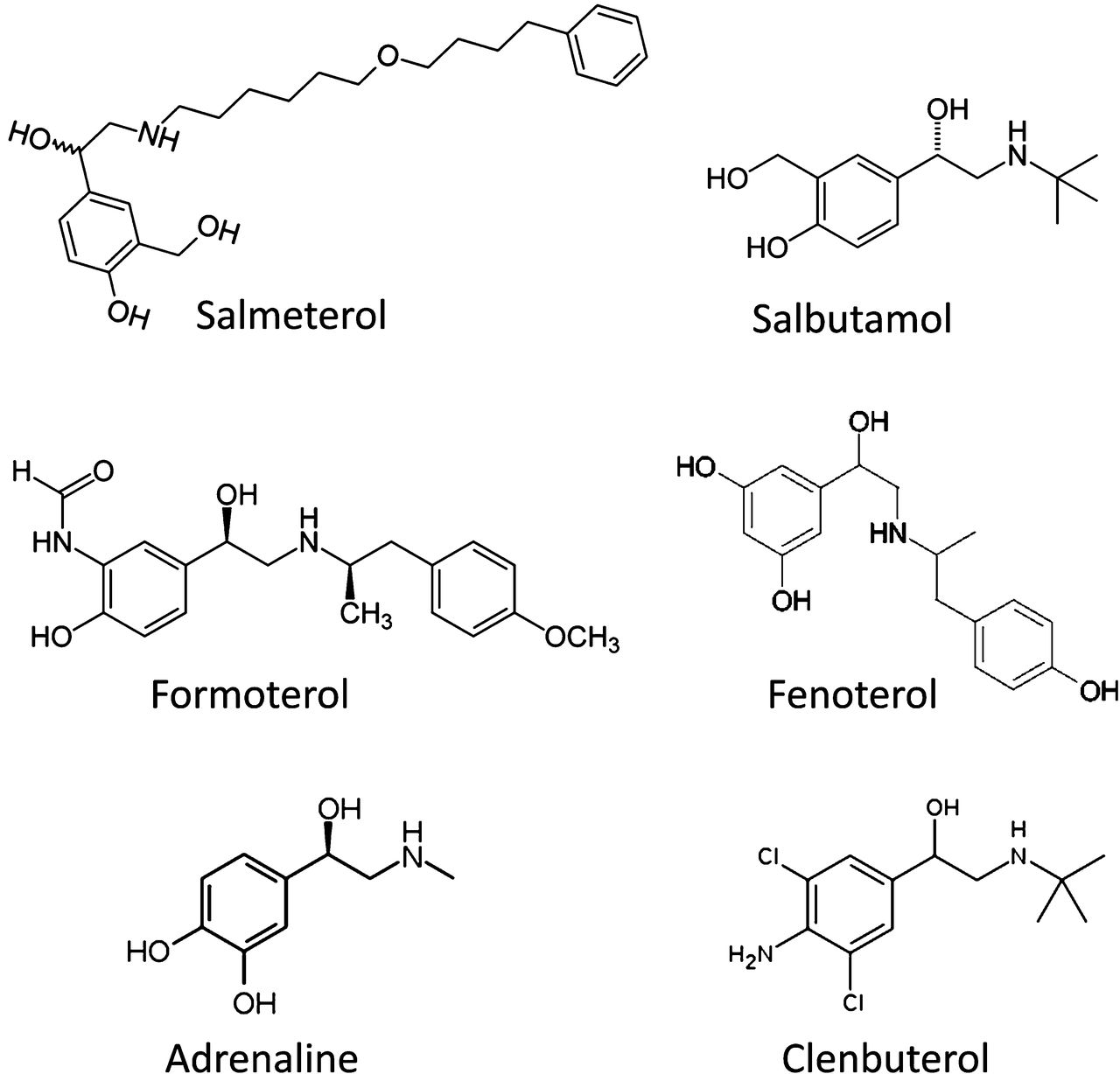 Salmeterol's Extreme β2 Selectivity Is Due to Residues in ...