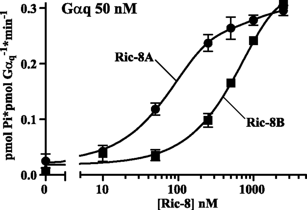 The G Protein α Chaperone Ric-8 as a Potential Therapeutic