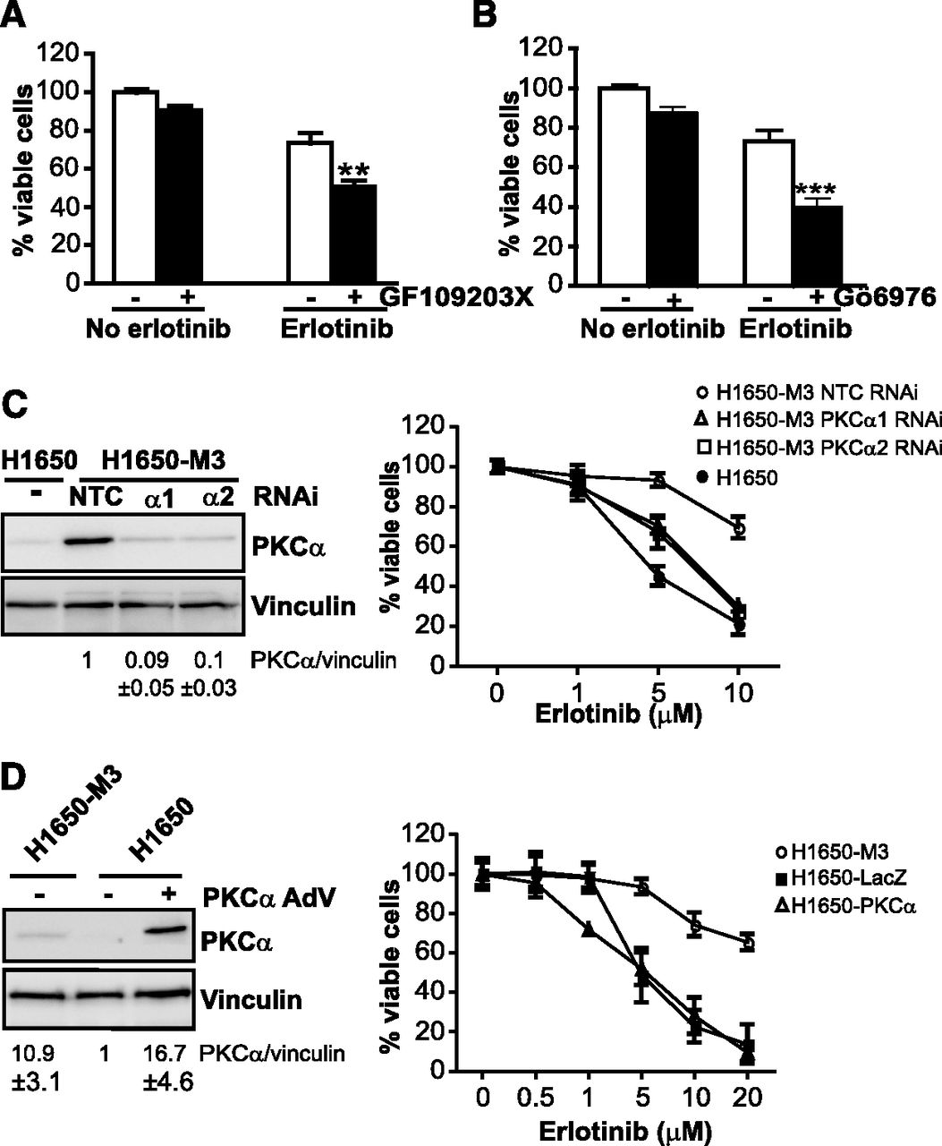 protein kinase c in cancer signaling and therapy kazanietz marcelo g