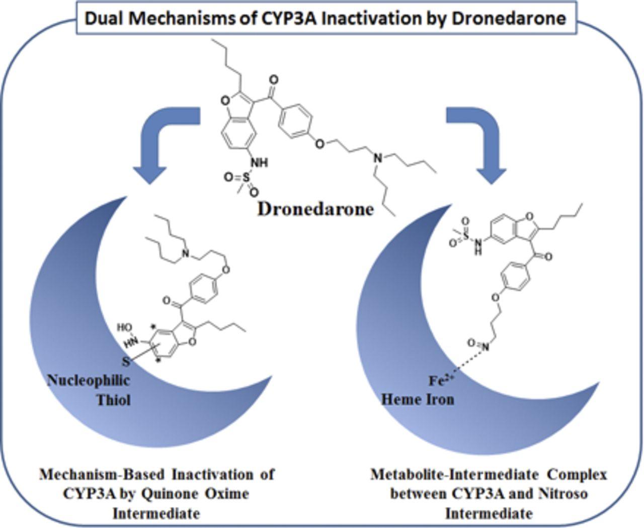 Image Result For N Desbutyl Dronedarone