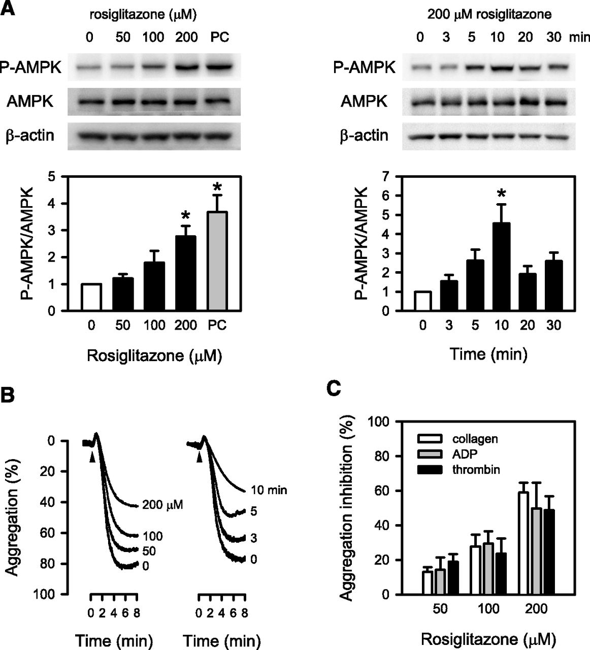 AMP-Activated Protein Kinase Mediates the Antiplatelet
