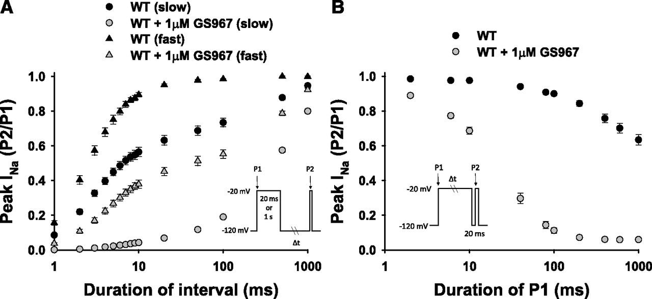 Use-Dependent Block of Human Cardiac Sodium Channels by