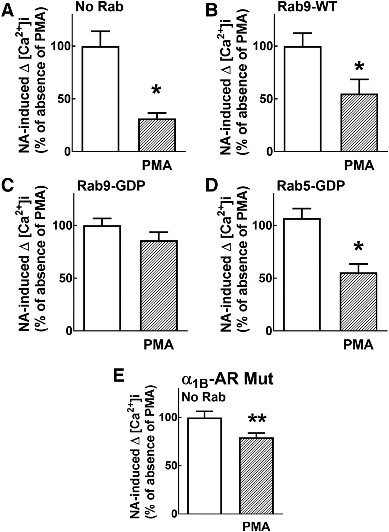 F8.large protein kinase c activation promotes �1b adrenoceptor  at aneh.co