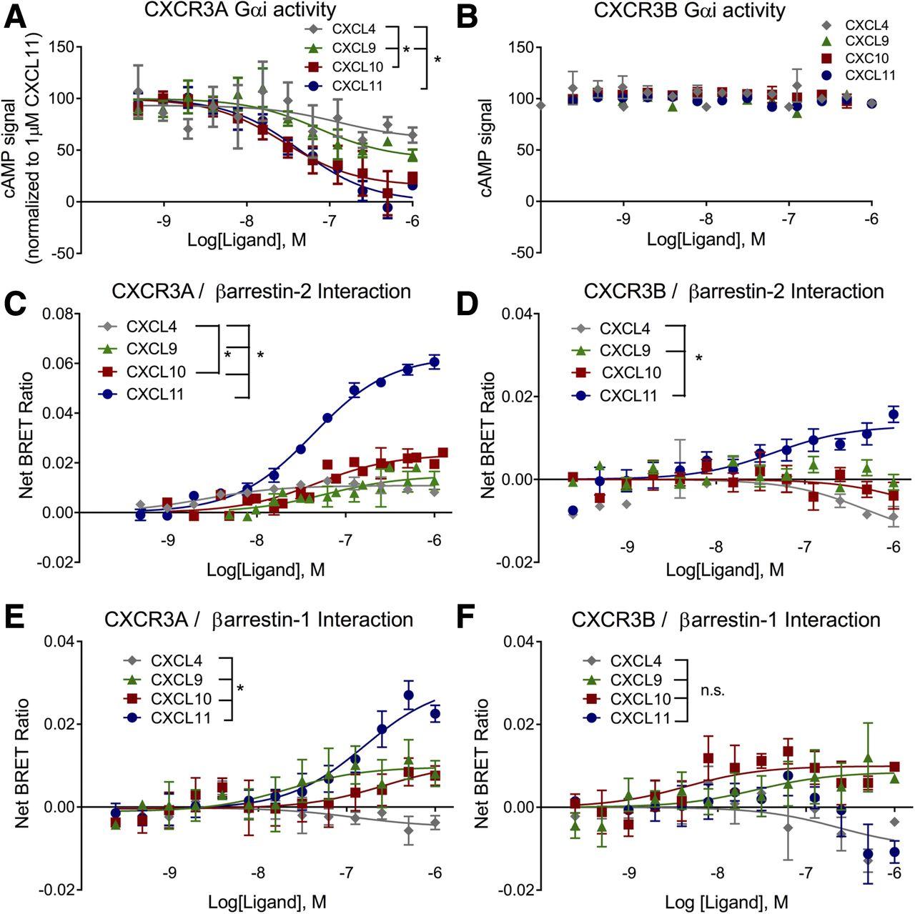 C-X-C Motif Chemokine Receptor 3 Splice Variants