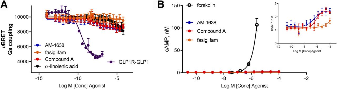GPR40-Mediated Gα12 Activation by Allosteric Full Agonists Highly