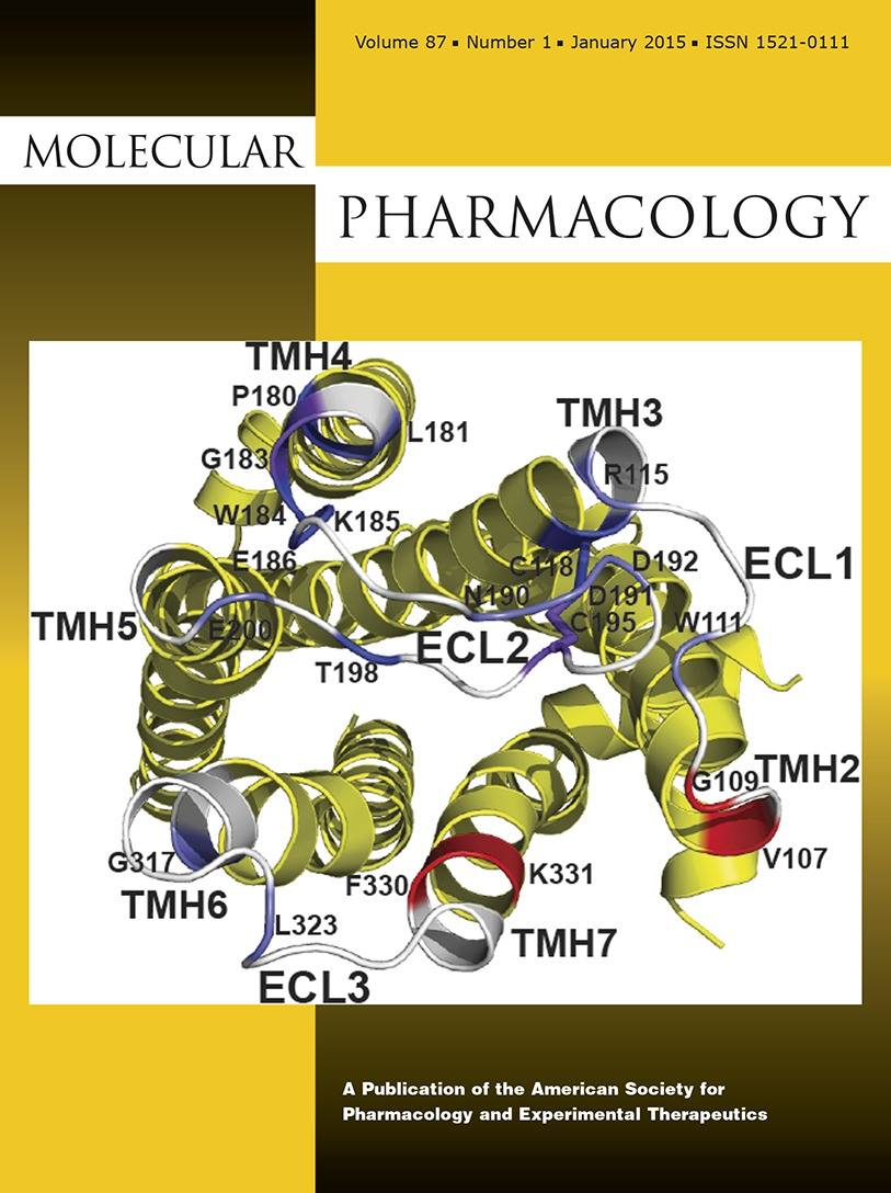 The Mitochondrial Complex V–Associated Large-Conductance