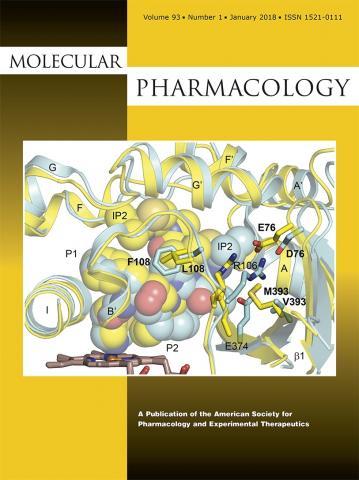 Molecular Pharmacology: 93 (1)